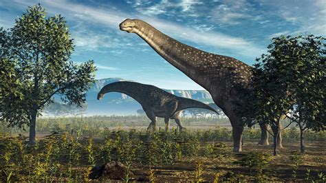 India's paleontologists fight destruction of its fossil