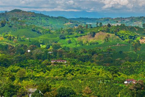 Colombia - Coffee, the Andes and the Amazon River
