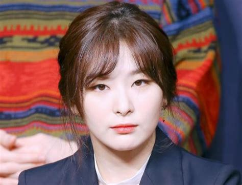 Seulgi (Red Velvet) Facts and Profile, Seulgi's Ideal Type