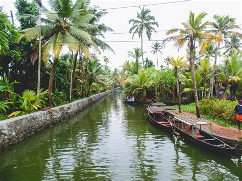 5 Reasons to Explore the Kerala Backwaters by Canoe! - Wee